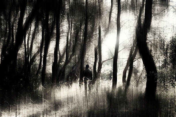Mann in einem Wald – Foto