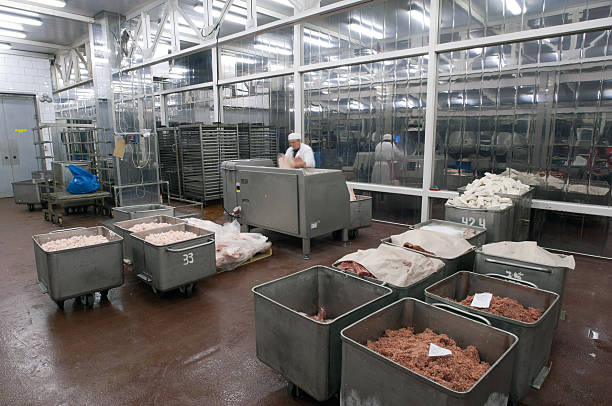 A man in a meat grinding food factory Meat production machine in the food factory. Meat grinder. People, human workers. distribution center stock pictures, royalty-free photos & images
