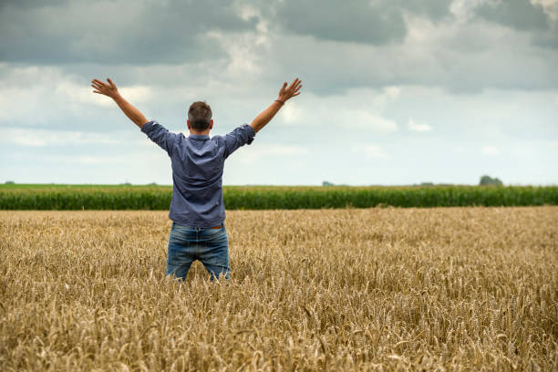 Man in a wheat field, arms outstretched Man with caucasian ethnicity in jeans and blue shirt standing in a ripe wheat field at a dyke. The man has raised and outstretched his arms, expressing positivity. The man is looking into the cloudy sky. Taken from rear view. Near Dangast, Friesland, Lower Saxony, Germany, Europe. lower saxony stock pictures, royalty-free photos & images