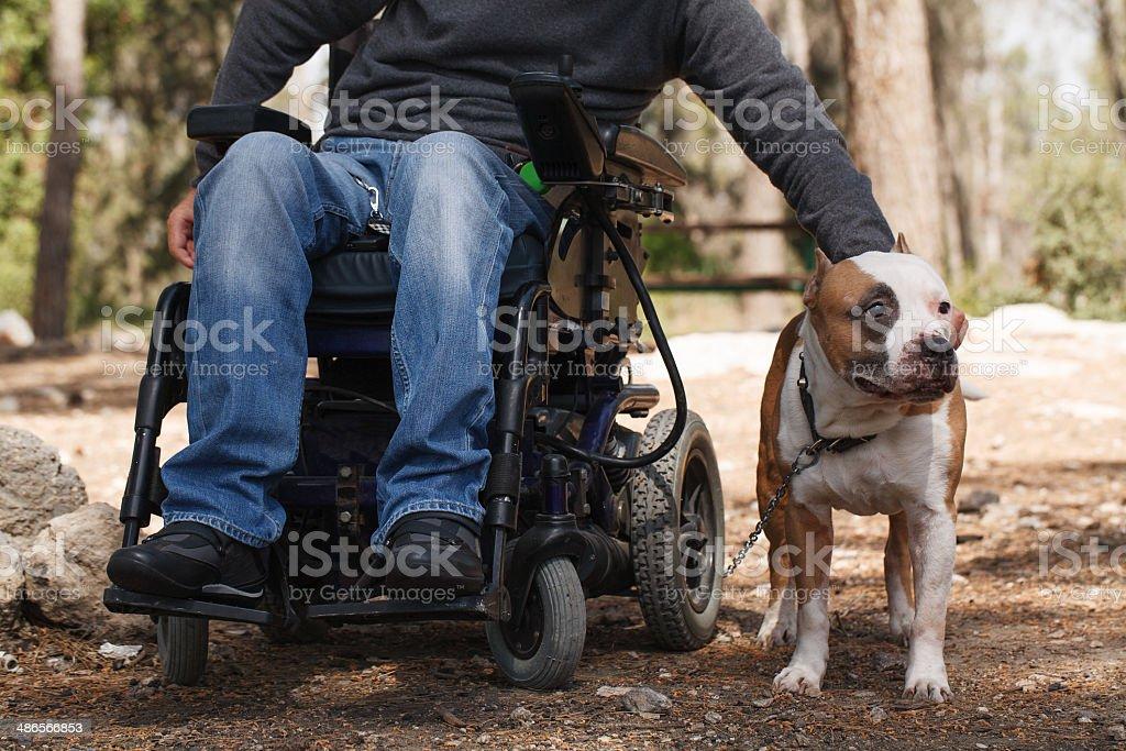 Hombre en una silla de ruedas, con sus fieles perros. - foto de stock