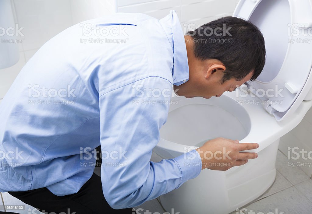 Man in blue shirt with head in toilet vomiting stock photo