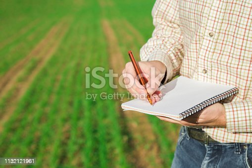istock Man in checkered shirt. Farmer's hand writing important information in notebook with pen on green field background. Fresh plants evolve in ground. Agribusiness concept. Close up. Side view. 1132121961
