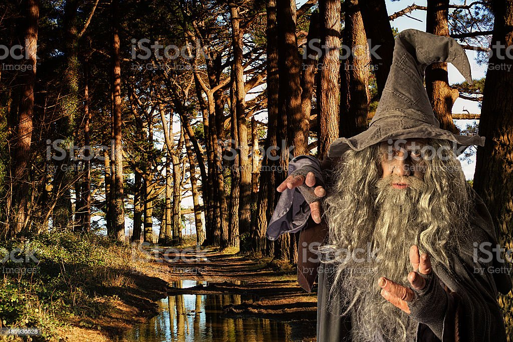 Man in costume in a forest stock photo