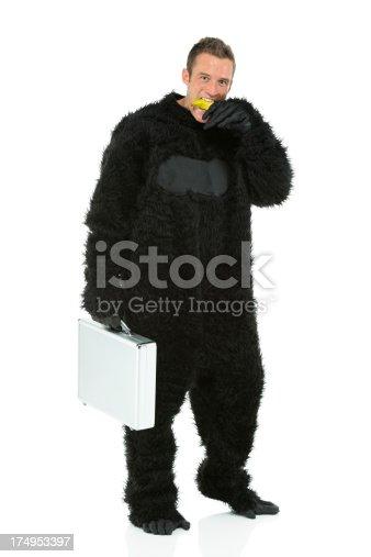 istock Man in gorilla costume eating a banana 174953397