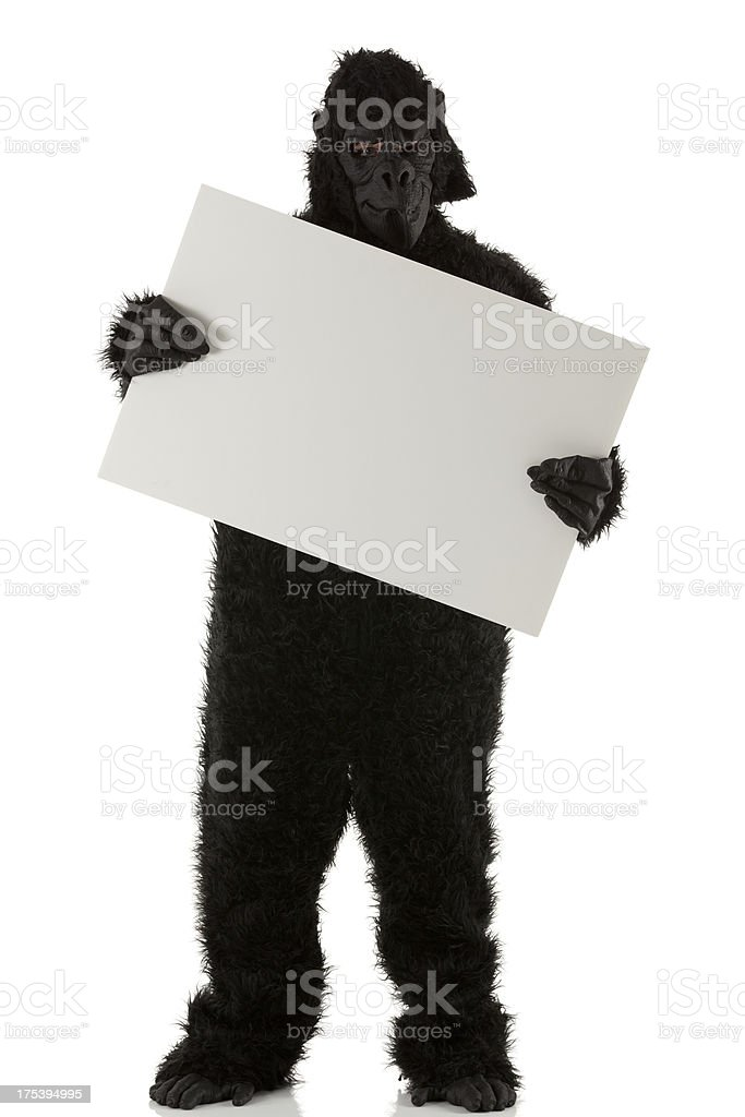 Man in gorilla costume holding a placard royalty-free stock photo