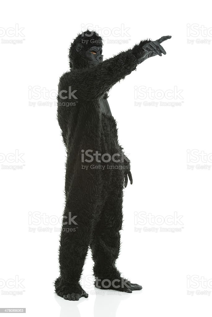 Man in gorilla costume pointing away royalty-free stock photo