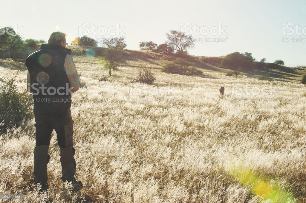 Homme en herbe avec guépard s'approchant - Photo de Adulte libre de droits