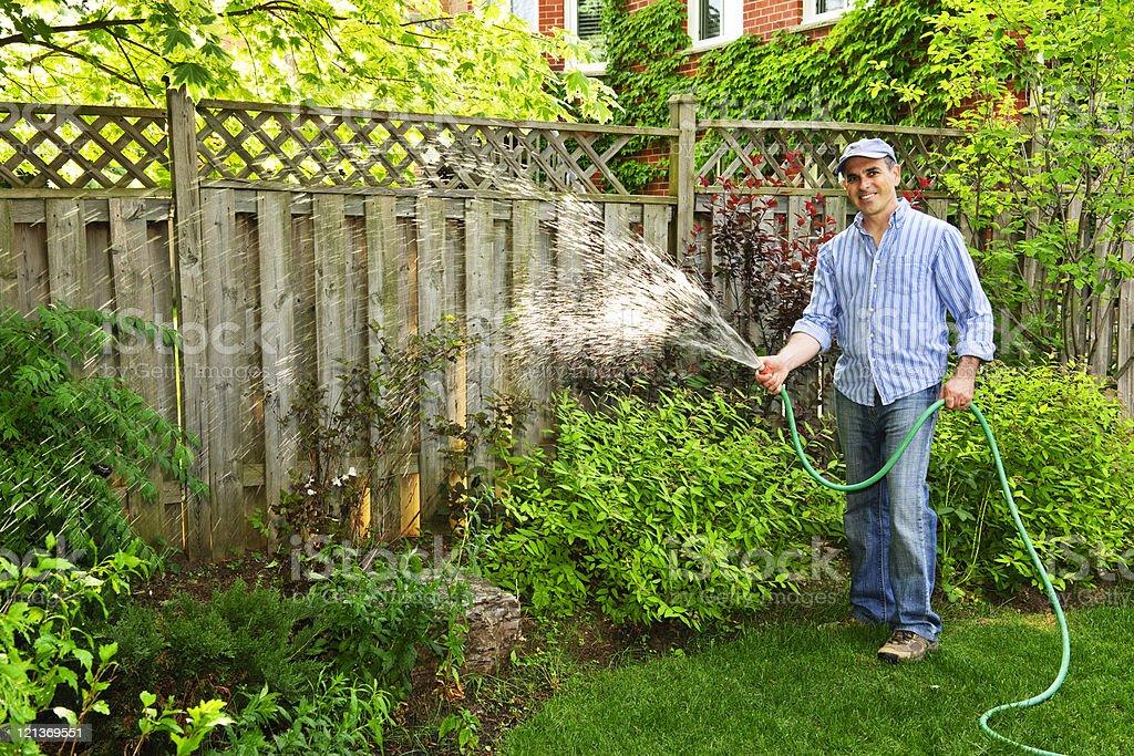 Man in his backyard watering his shrubs stock photo