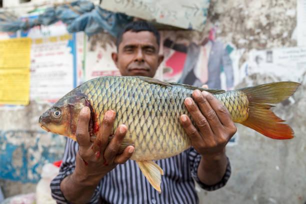 Dhaka, Bangladesh - February 8, 2017: Man in Korail Slum proudly holding up a fresh fish – Foto
