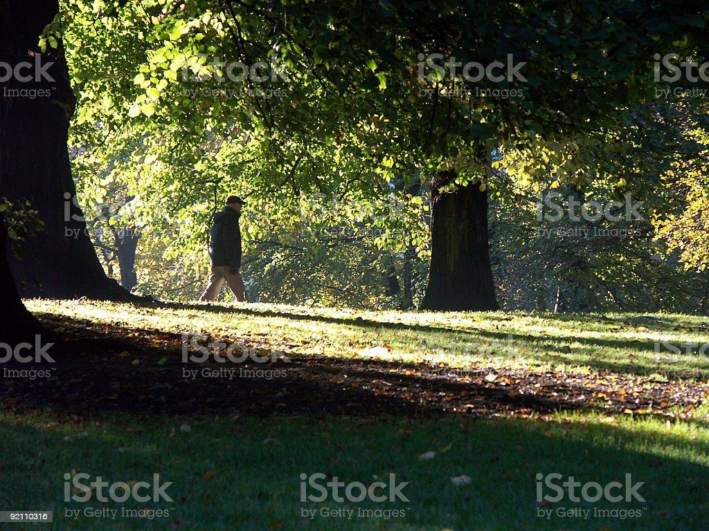 Man in park stock photo