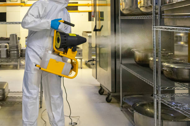 man in protective equipment disinfects with a spray gun industrial kitchen surfaces due to coronavirus covid-19 .Virus pandemic man in protective equipment disinfects with a spray gun industrial kitchen surfaces due to coronavirus covid-19 .Virus pandemic decontamination stock pictures, royalty-free photos & images