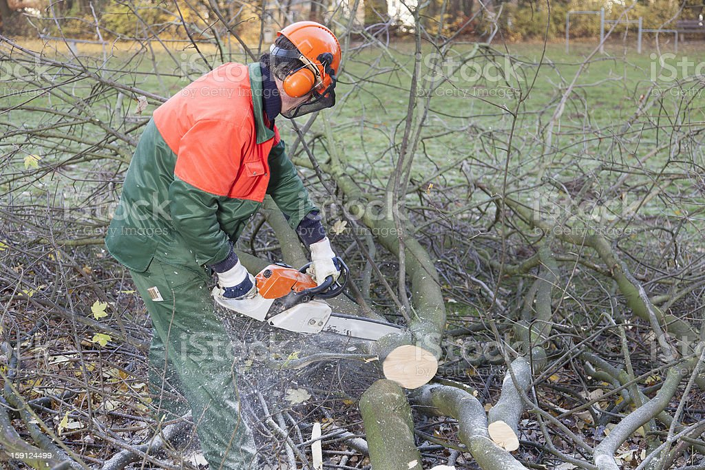 Man in protective gear chopping up trees with chainsaw royalty-free stock photo