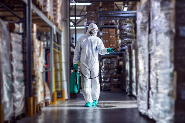 Man in protective suit and mask disinfecting warehouse full of food products from corona virus / covid-19. stock photo