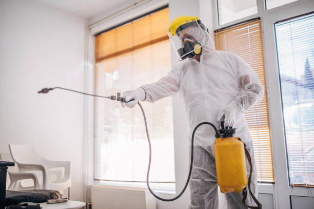 Man in protective suit disinfecting and spraying every room in the building One man, man in protective suit disinfecting and spraying every room in the building alone. decontamination stock pictures, royalty-free photos & images