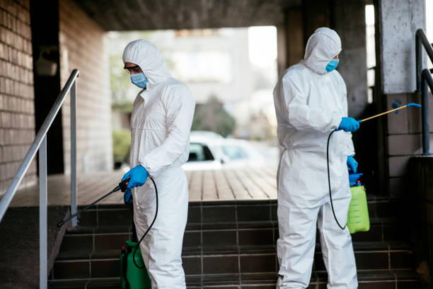 Man in protective suit disinfecting building entrance stock photo stock photo