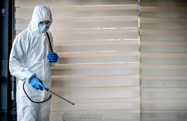 Man in quarantine clothes disinfecting room Man in quarantine clothes disinfecting room. Men with gloves  sanitizing the desk to prevent germs and bacteria infections decontamination stock pictures, royalty-free photos & images