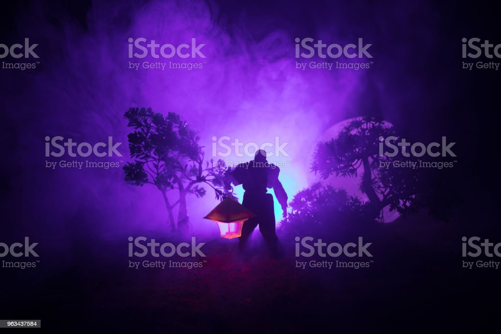 Man in raincoat coming from dark forest with glowing lantern in his hand concept. Silhouette of a horror killer with lamp - Zbiór zdjęć royalty-free (Arachnocampa luminosa - Owad)