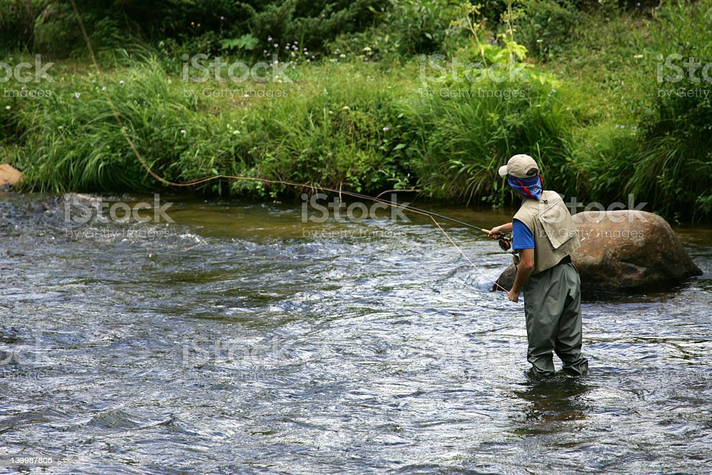 Man in shallow river fly fishing stock photo