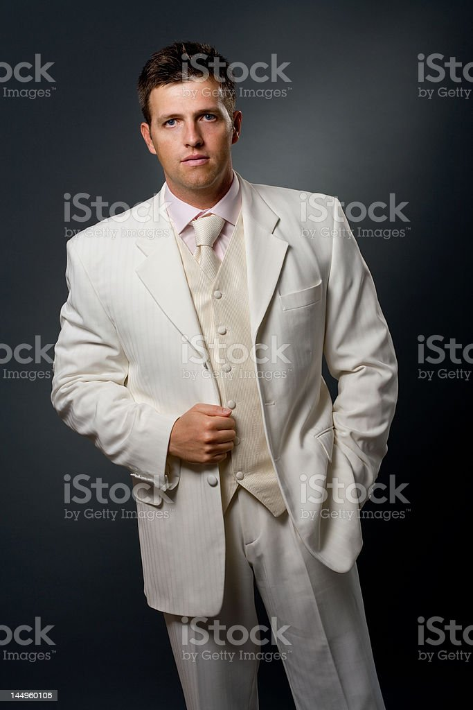 Man in suit royalty-free stock photo