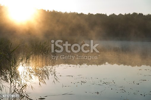 115874504istockphoto man in the boat 471776571
