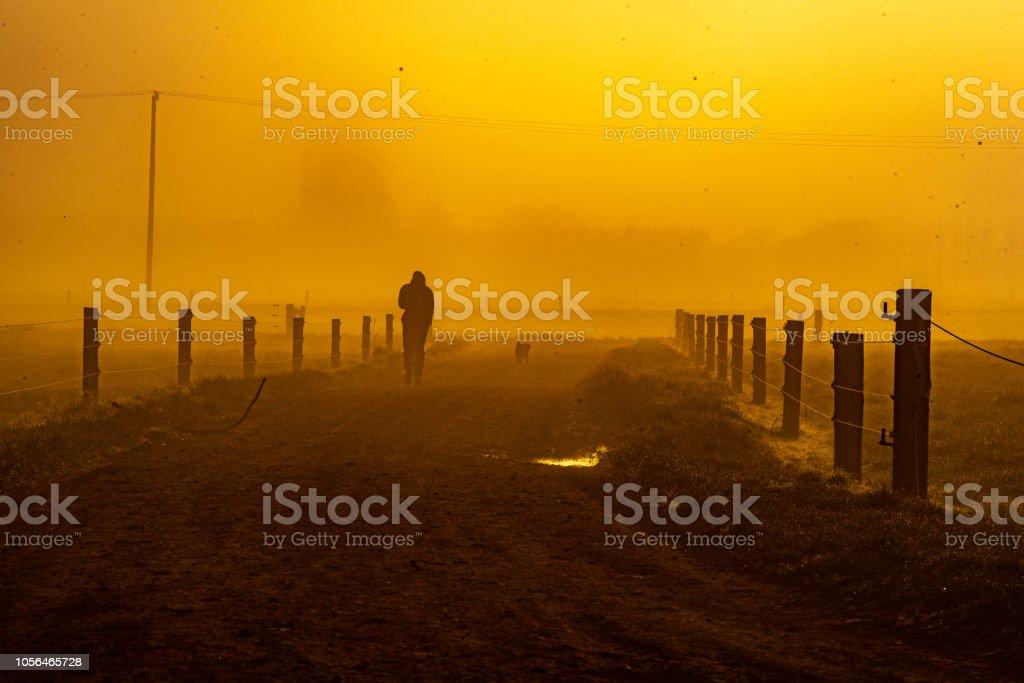 Man in the fog stock photo