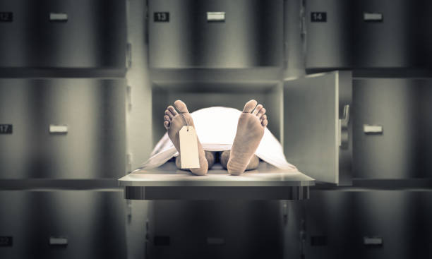 man in the morgue - death stock pictures, royalty-free photos & images