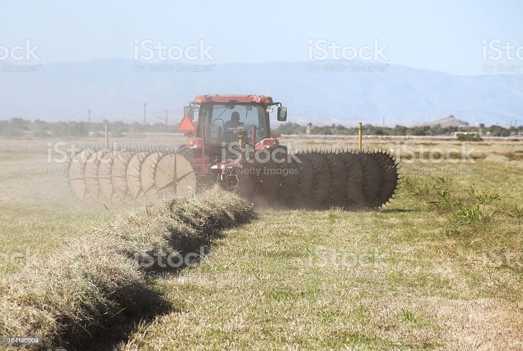 Man in tractor tedding hay stock photo