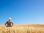 istock Man in Wheat Field 147032304