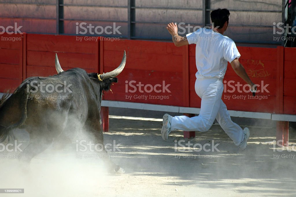 Man in white running from a bull chasing him royalty-free stock photo