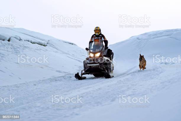 Man is riding a snowmobile among the hummocks accompanied by a dog picture id952011344?b=1&k=6&m=952011344&s=612x612&h=zkbhstp axbv5x82haeysbjdnpio x1u8bmprql3kko=