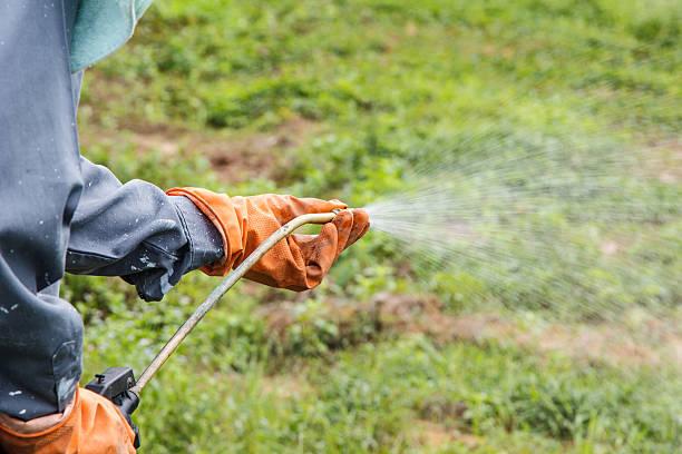 man  is spraying herbicide - wieden stockfoto's en -beelden