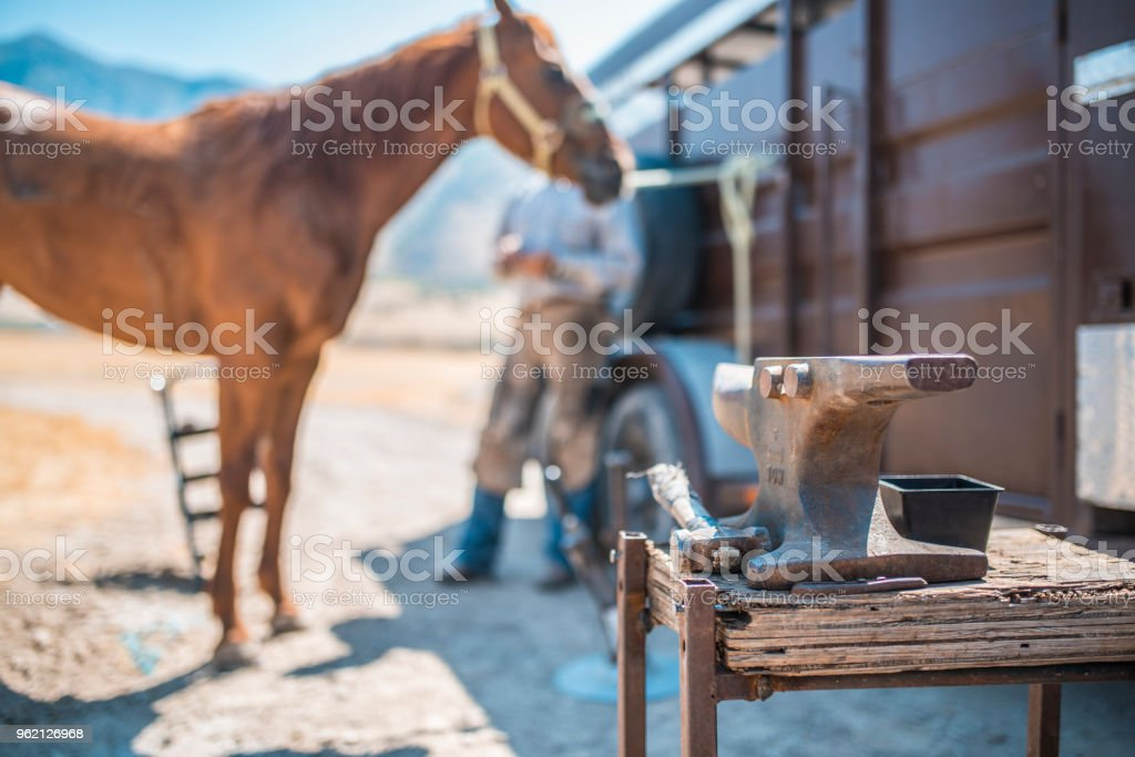 Man is trotting horse's hooves stock photo