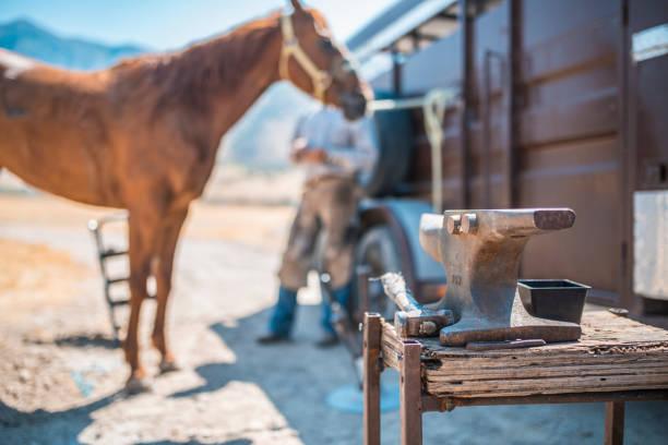 mannen trav hästens hovar - hovslagare bildbanksfoton och bilder