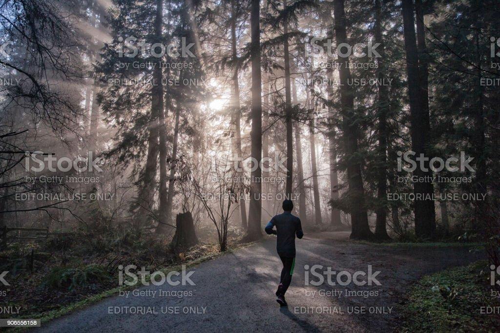 Man jogging in a sun bursting park stock photo