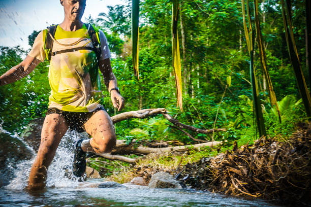 A man jogging in the tropical forrest stock photo