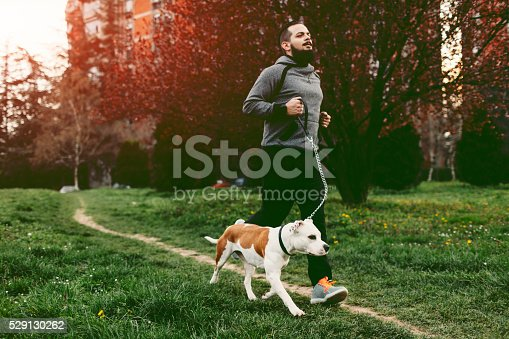 istock Man Jogging With His Dog. 529130262