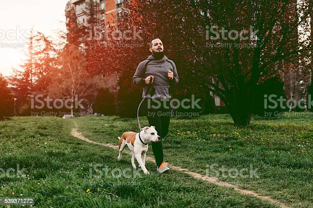 Man jogging with his dog picture id539371272?b=1&k=6&m=539371272&s=612x612&h=nkppu54an5ei4aaisuluokbwzvupv gsgoo5tsoqkhm=
