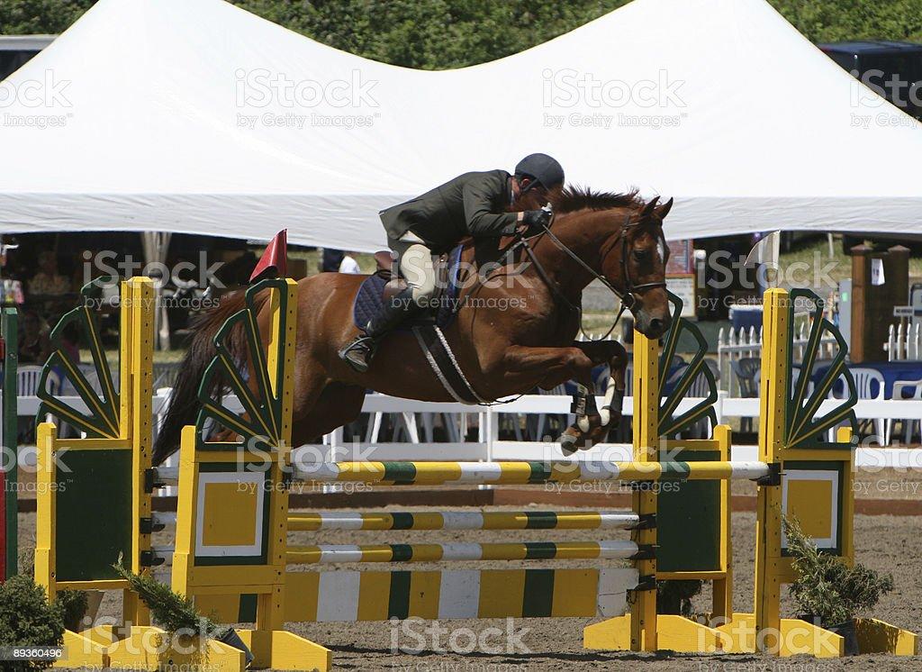 Man Jumping a Horse royaltyfri bildbanksbilder