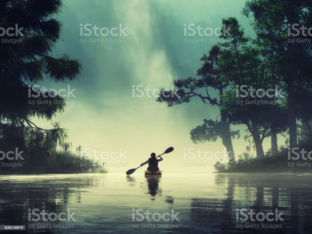 Man kayaking on a lake wild stock photo