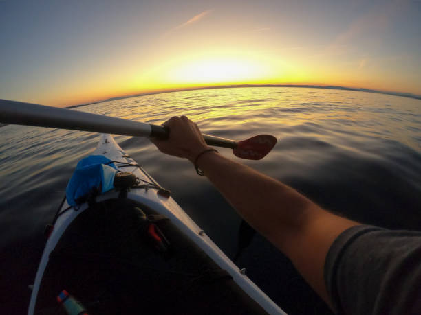 Man kayaking towards sunset stock photo