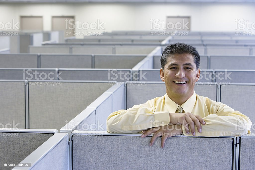 Man leaning on cubicle wall in office, smiling, portrait royalty free stockfoto