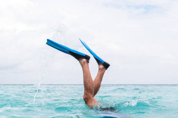 man legs with flippers diving into water boy legs with flippers in a tropical destination diving flipper stock pictures, royalty-free photos & images