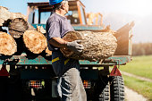Man loading trailer with firewood