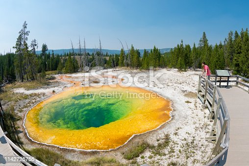 Man on a boardwalk looking at Beauty Pool hot spring in Yellowstone National Park