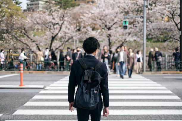 新常態の春に桜を見ている男 - 新卒 ストックフォトと画像