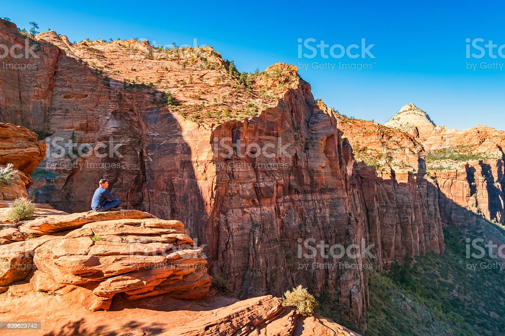 Man Looks at View from Canyon Overlook Zion National Park stock photo