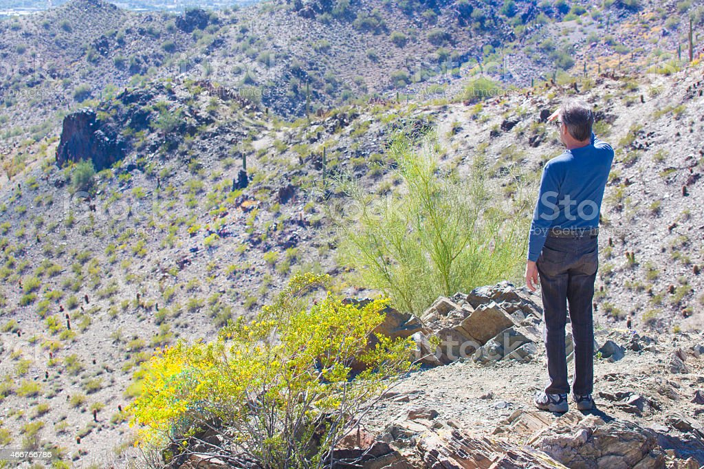 Man Looks Out At The Sonoran Desert In Arizona Rm Stock