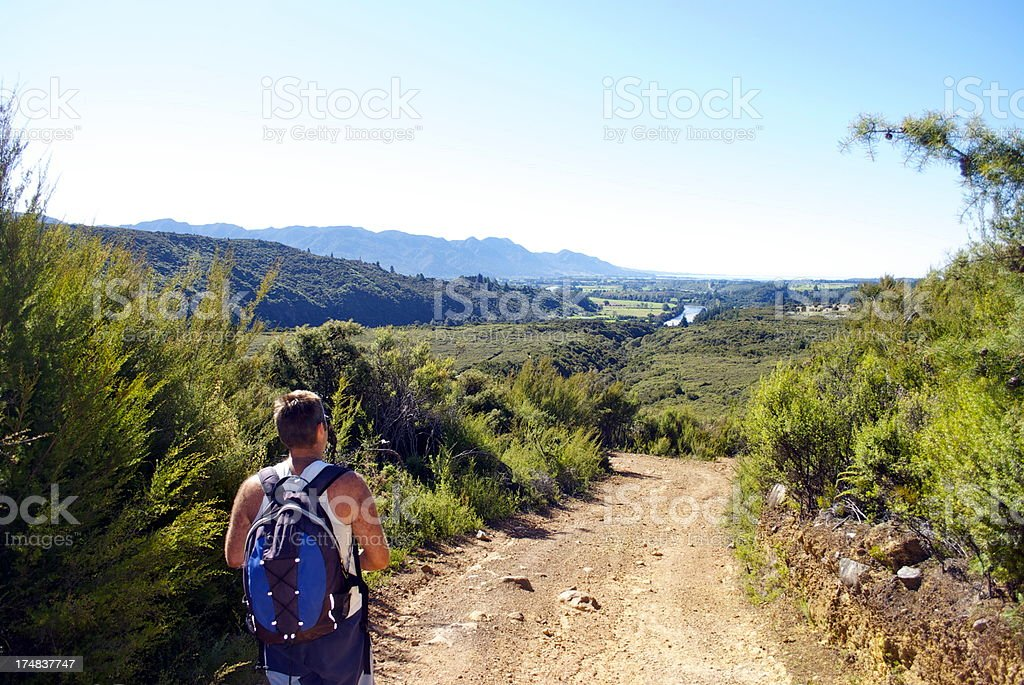 Man looks to Golden Bay from the Aorere Goldfields, NZ royalty-free stock photo