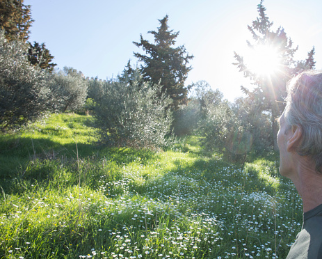 Man Looks Up Hill Into Sunlight Stock Photo - Download Image Now