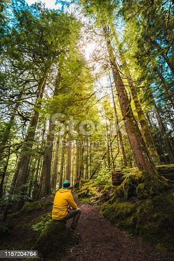 man lost in the forest of north america